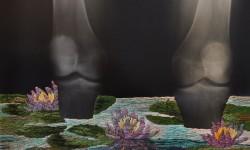 Broderie et rayons X par Matthew Cox