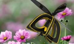 Drone abeille Plan Bee
