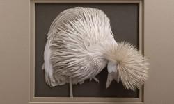 Sculptures papier par Calvin Nicholls