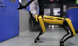 Robot chien de Boston Dynamics