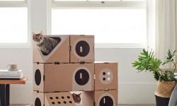 Cabanes modulaires pour chats