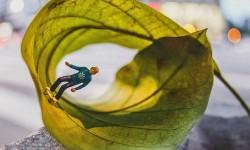 Mondes miniatures de Renan Viana