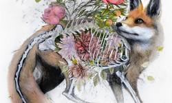 Anatomie et fleurs de Nunzio Paci