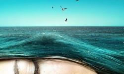 Montages surréalistes de Monica Carvalho